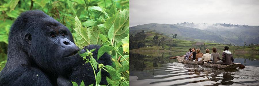 3 Day Gorilla tour in Uganda