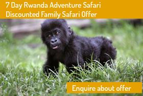 7 Day Family Safari