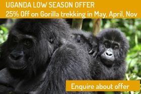 Low Season Offer in Uganda
