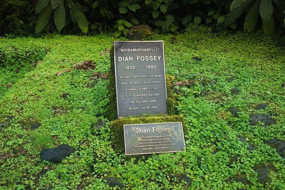 Dian Fossey Trail