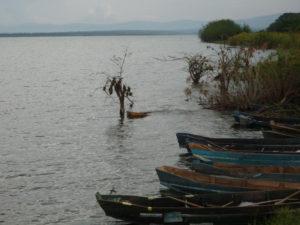 lake Shakani - Akagera National Park